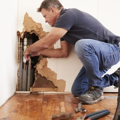 Pittsburgh Mold Remediation